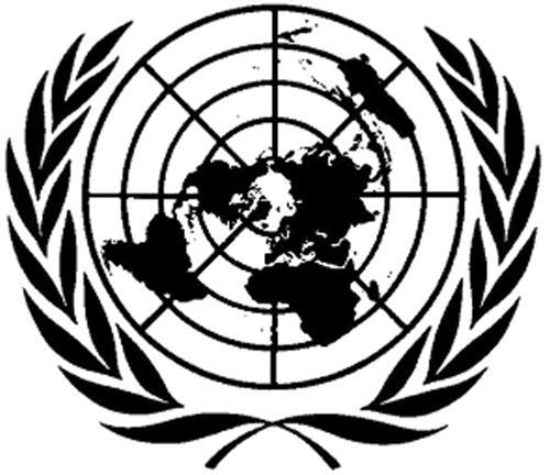 THE UNITED NATIONS ORGANISATIO