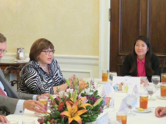 Ambassador Lomellin addresses the CAA Fellows