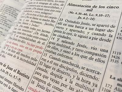 Mateo 14:14