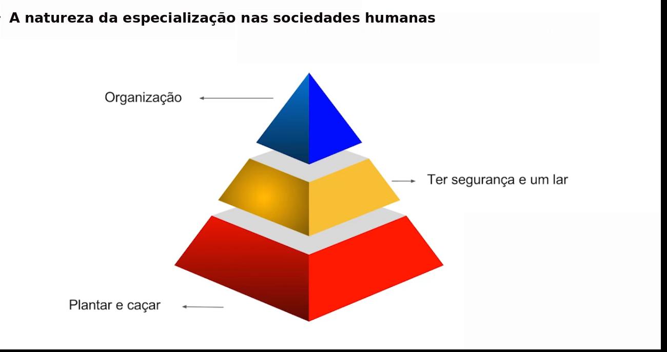 Gráfico da Pirâmide da Natureza da Especialização nas Sociedades Humanas