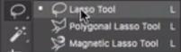 lasso tool e suas variantes