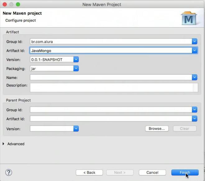 configurando group id e artifact id