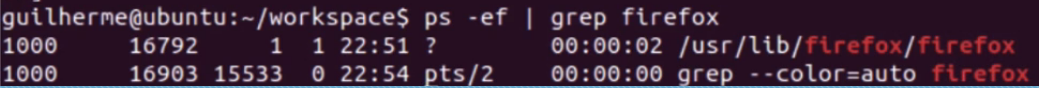 filtrando resultados com o grep