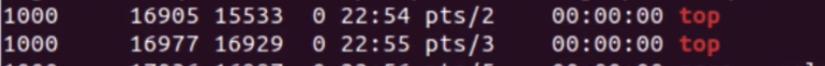 lista de processos filtrada por top
