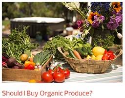 a table full of beautiful vegetables makes us ask whether organic produce is really worth the price