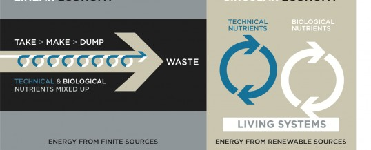 The Circular Economy and What it Means for Battery Recycling