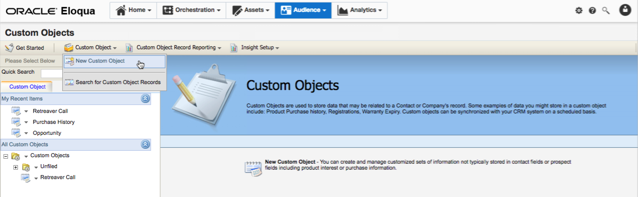 Creating a new custom object in Eloqua.
