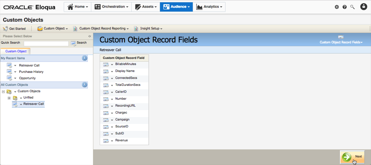 The fields have been added to the custom object.