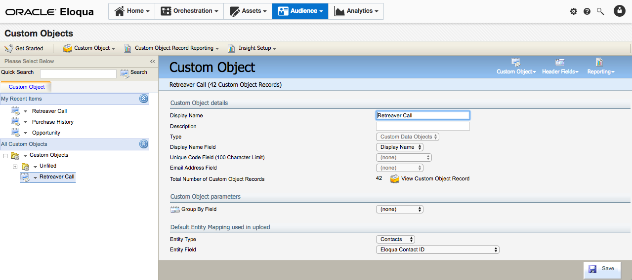 The Custom Object is configured.