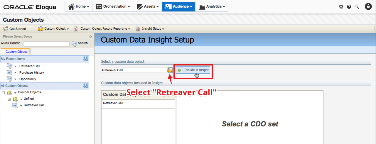 Selecting the Retreaver Call custom object.