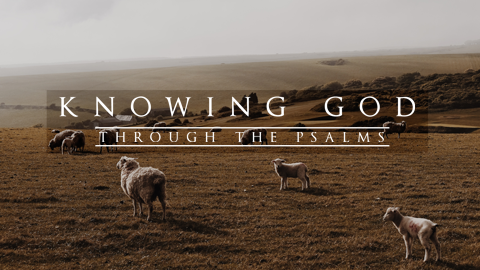 Knowing God Through the Psalms - Sebastian