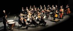 Vvs orchestra %281%29