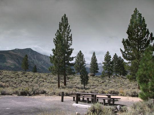 ⛺🐛 Paha Campground, Humboldt-Toiyabe National Forest