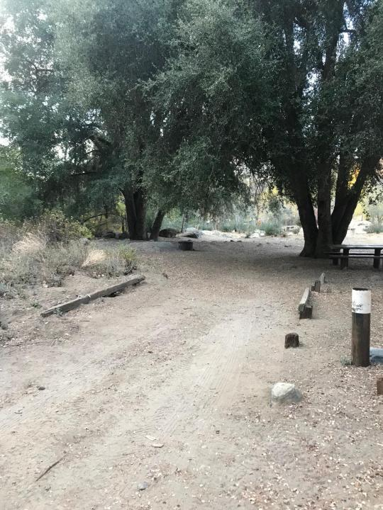 ⛺🐛 Reyes Creek Campground, Los Padres National Forest, CA