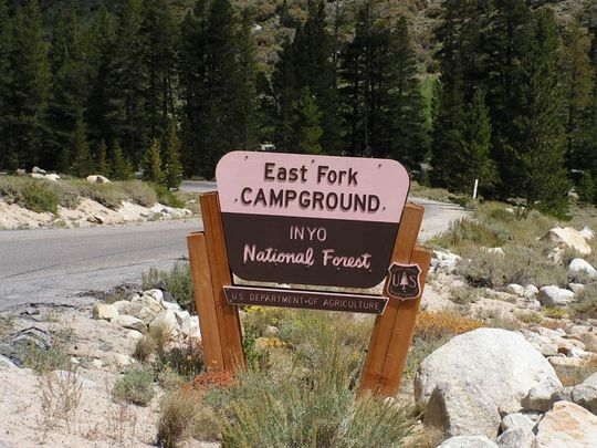 ⛺🐛 Upper Sage Flat Campground, Inyo National Forest, CA