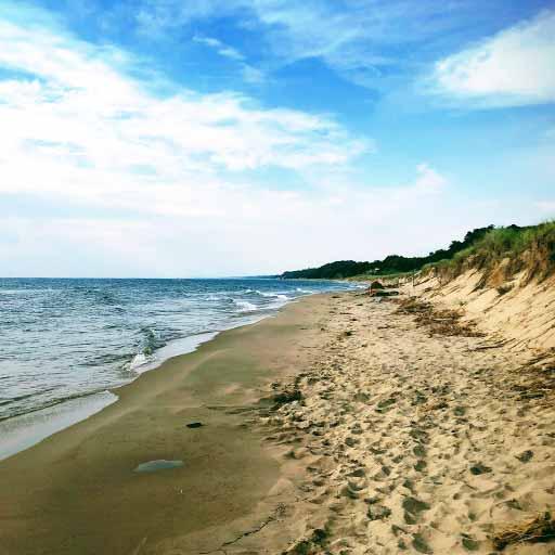 The shore of Lake Michigan.