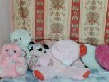 lovelysofie's Video Cover Image 4586371