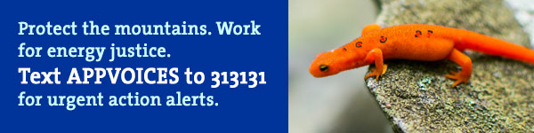 Text AppVoices to 313131 to receive urgent action alerts
