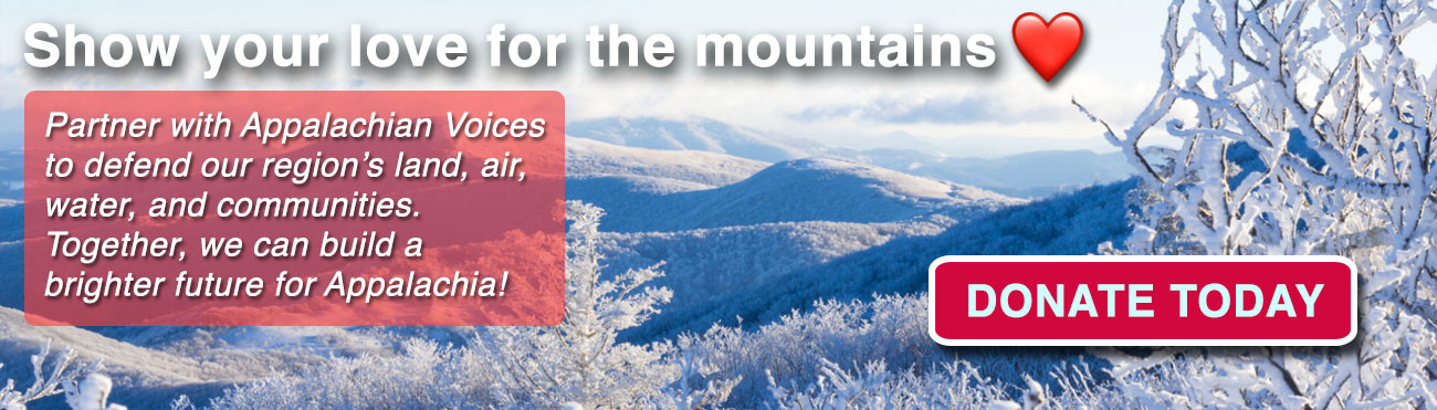 Help us protect Appalachia in 2021 and beyond!