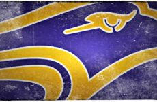 Golden Hawks flying high with two more CFC100 offers