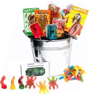 Bucket of Bugs Candy Assortment - Large