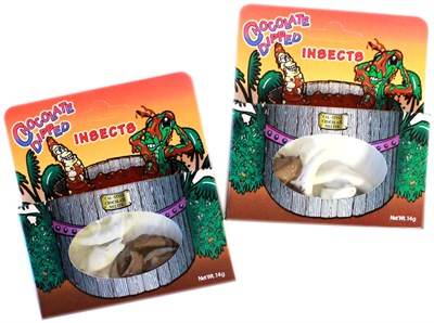 Chocolate Dipped Insects 4ct.