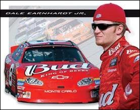 Dale Jr. - Bud Racing Sign (Discontinued)