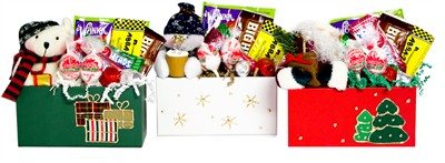 Fun Size Holiday Gift Box with Coordinating Stuffed Plush Animal (sold out)
