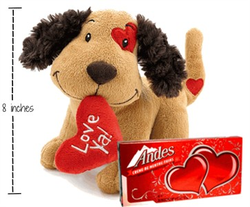 Love Ya Puppy Dog Plush Valentine Gift with Andes Thin Mints