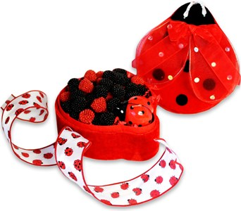 Lady Bug Keepsake Candy Gift Box, medium