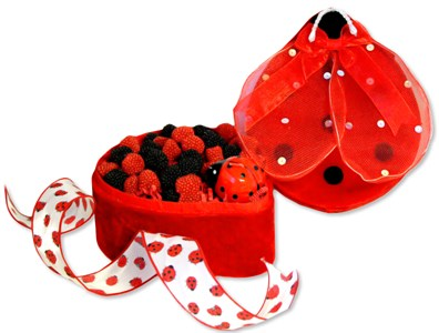 Lady Bug Keepsake Candy Gift Box, large