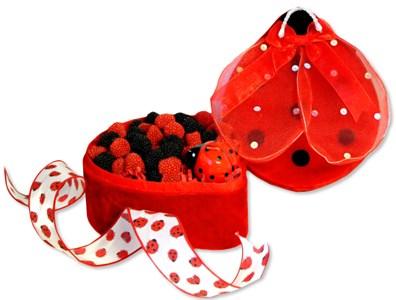 Lady Bug Keepsake Candy Gift Box, large