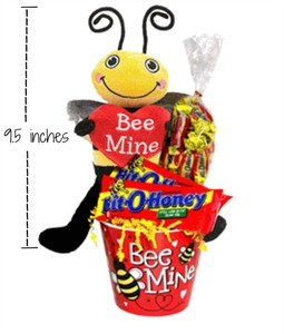 Bee My Bit O Honey Plush Bee Valentine Gift