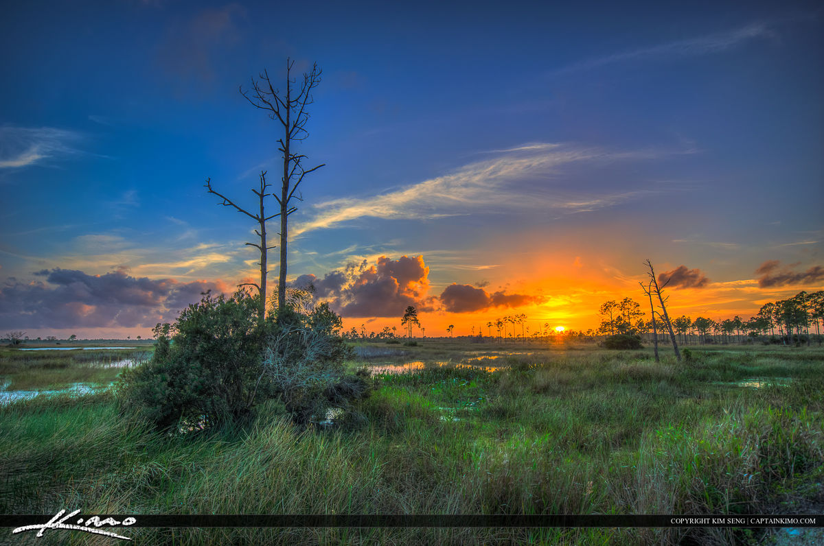 Florida Wetlands Jupiter Sunset at Pine Glades