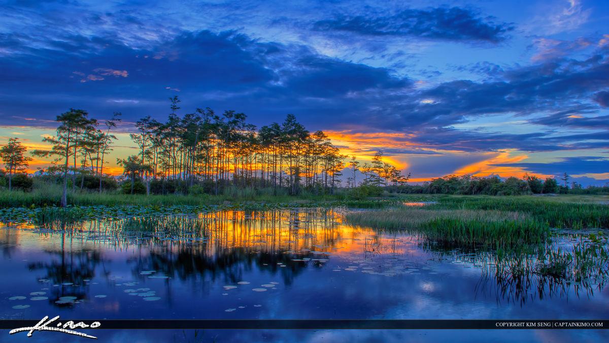 Palm Beach Florida Fishing