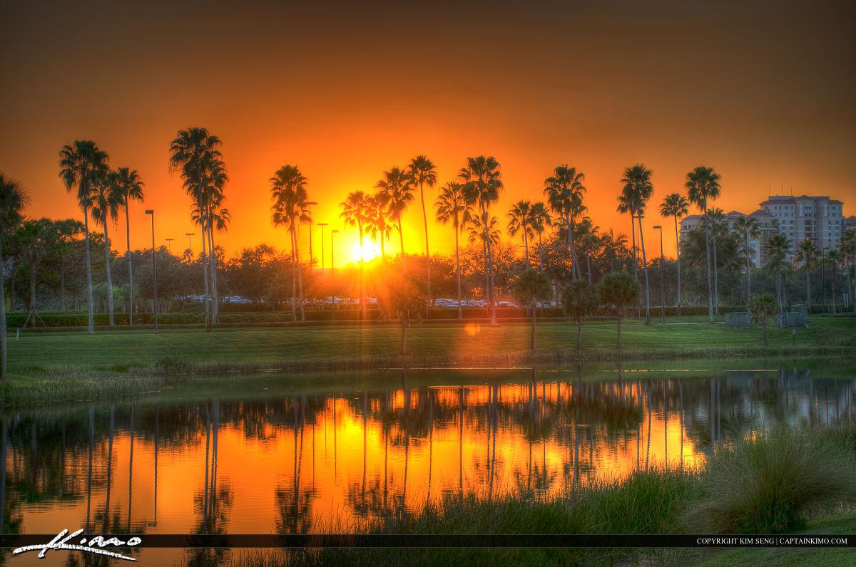Sunset Over Palm Beach Gardens Florida Trees