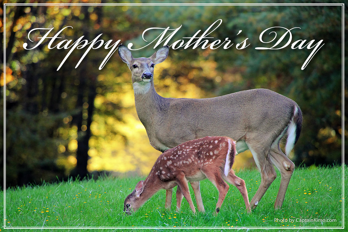 Happy Mothers Day May 2015