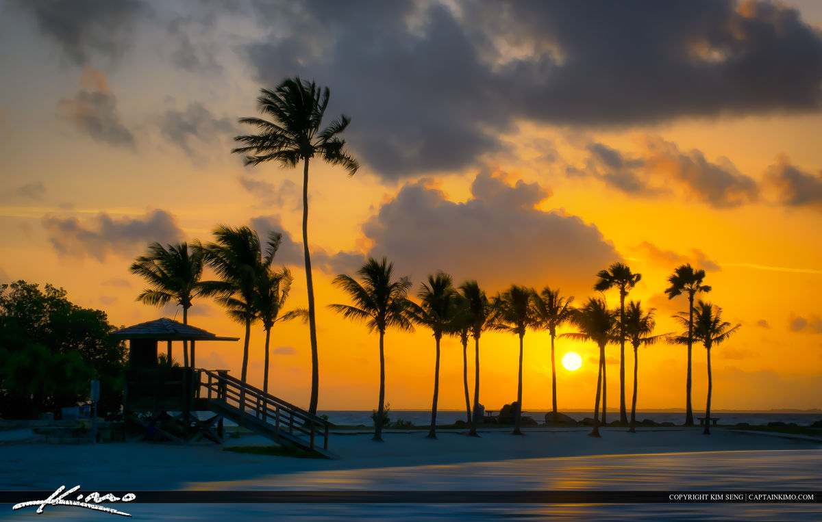 Sunrise at Matheson Hammock Park in Coral Gables Coconut Trees
