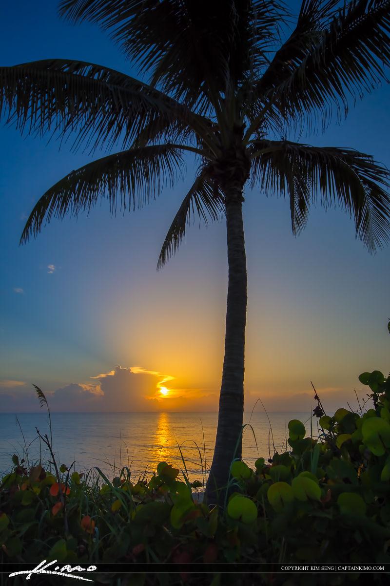 Sunrise  Treasure Island