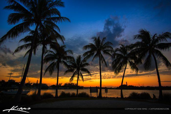 Dubois Park Coconut Tree Sunset Jupiter Florida