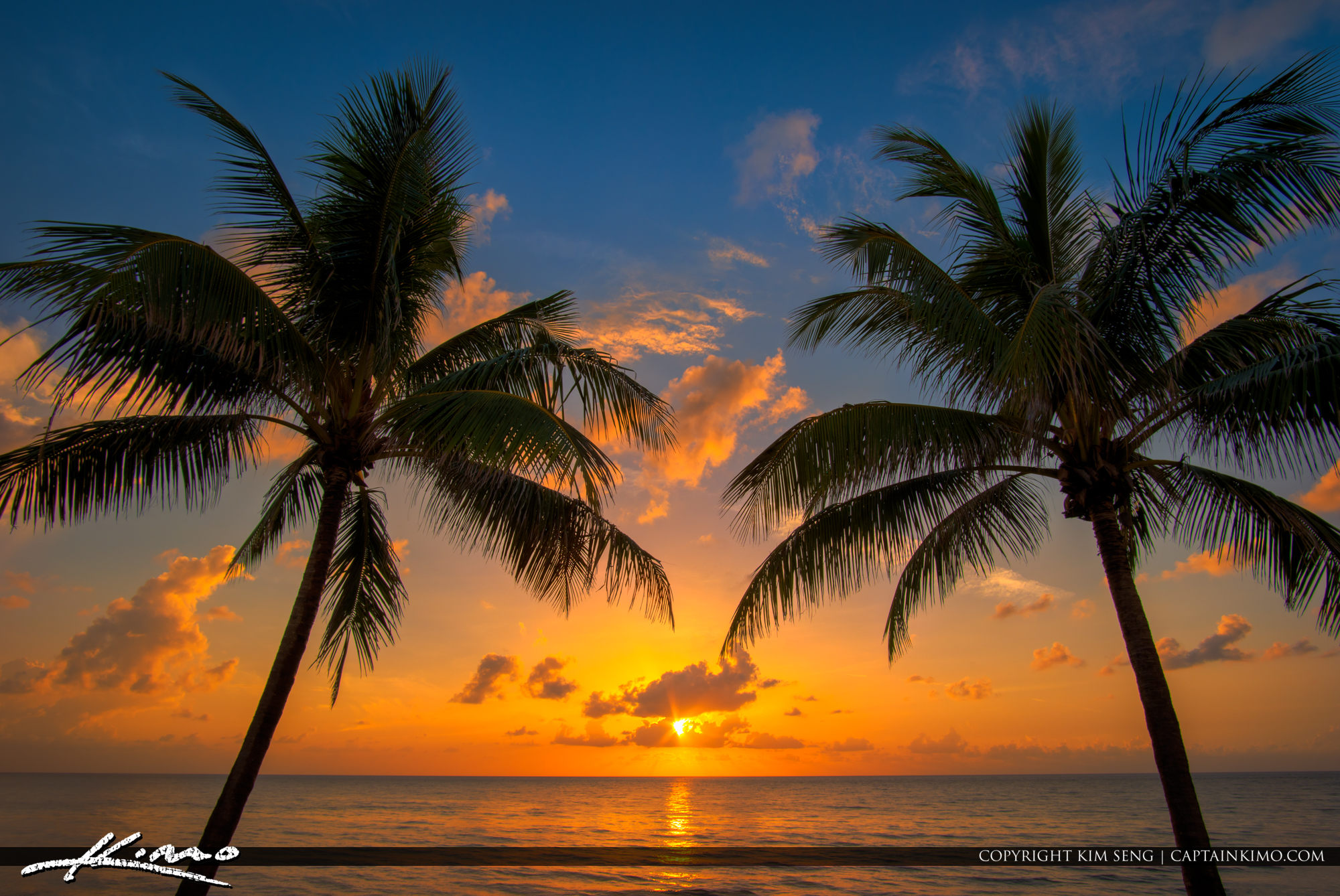 Palm Trees On The Beach: Coconut Tree Sunrise At The Beach