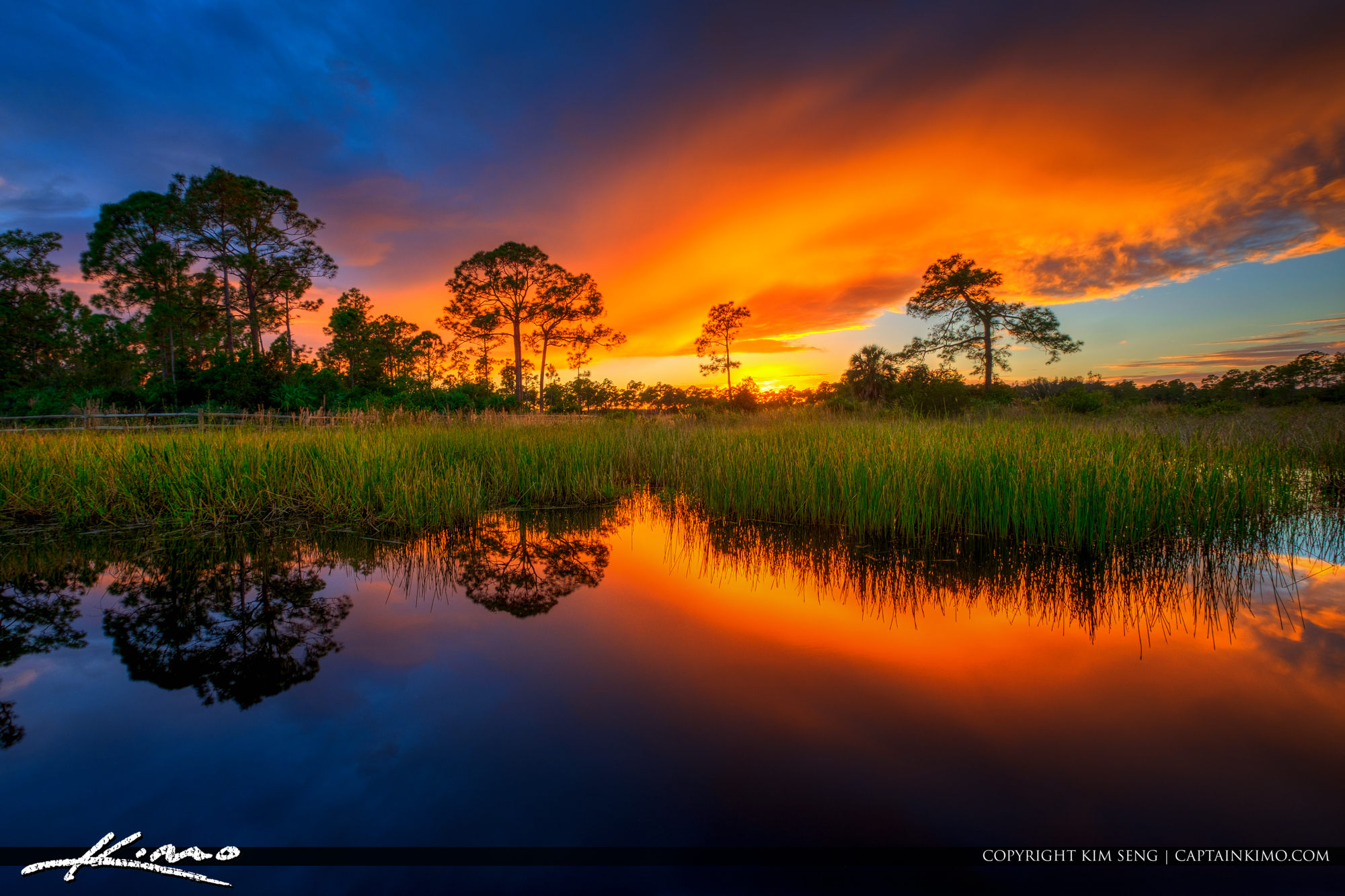 Acreage Pines Natural Area Sunset Loxahatchee Florida