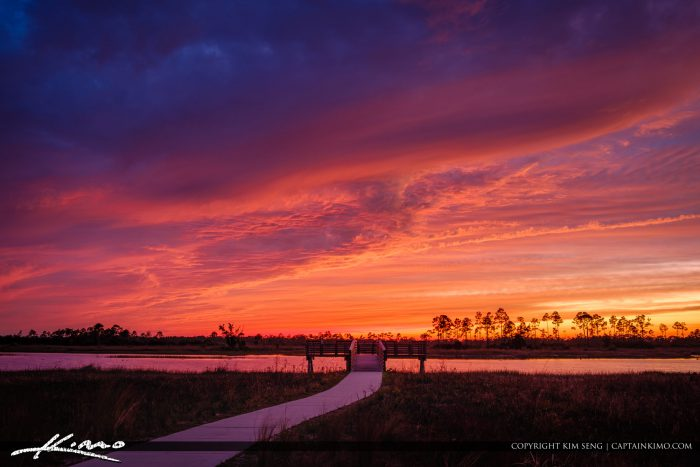 Pine Glades Natural Area Sunset Over Wetlands