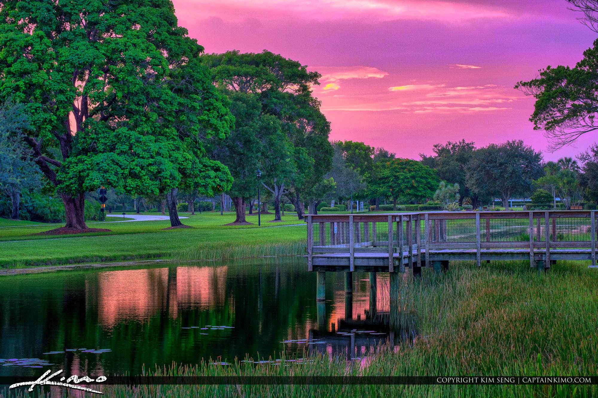 PGA National Park Purple Sky Colors Palm Beach Gardens