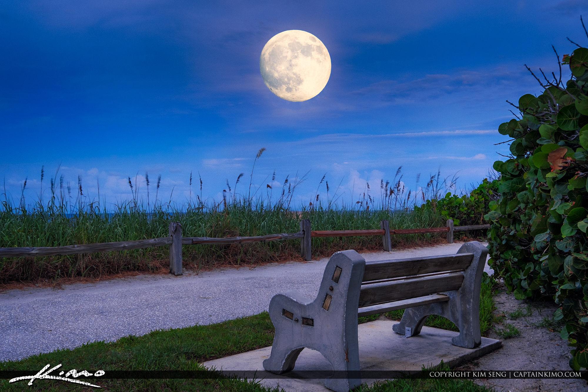 Coral Cove Park Moonrise Over the Beachin Jupiter Island