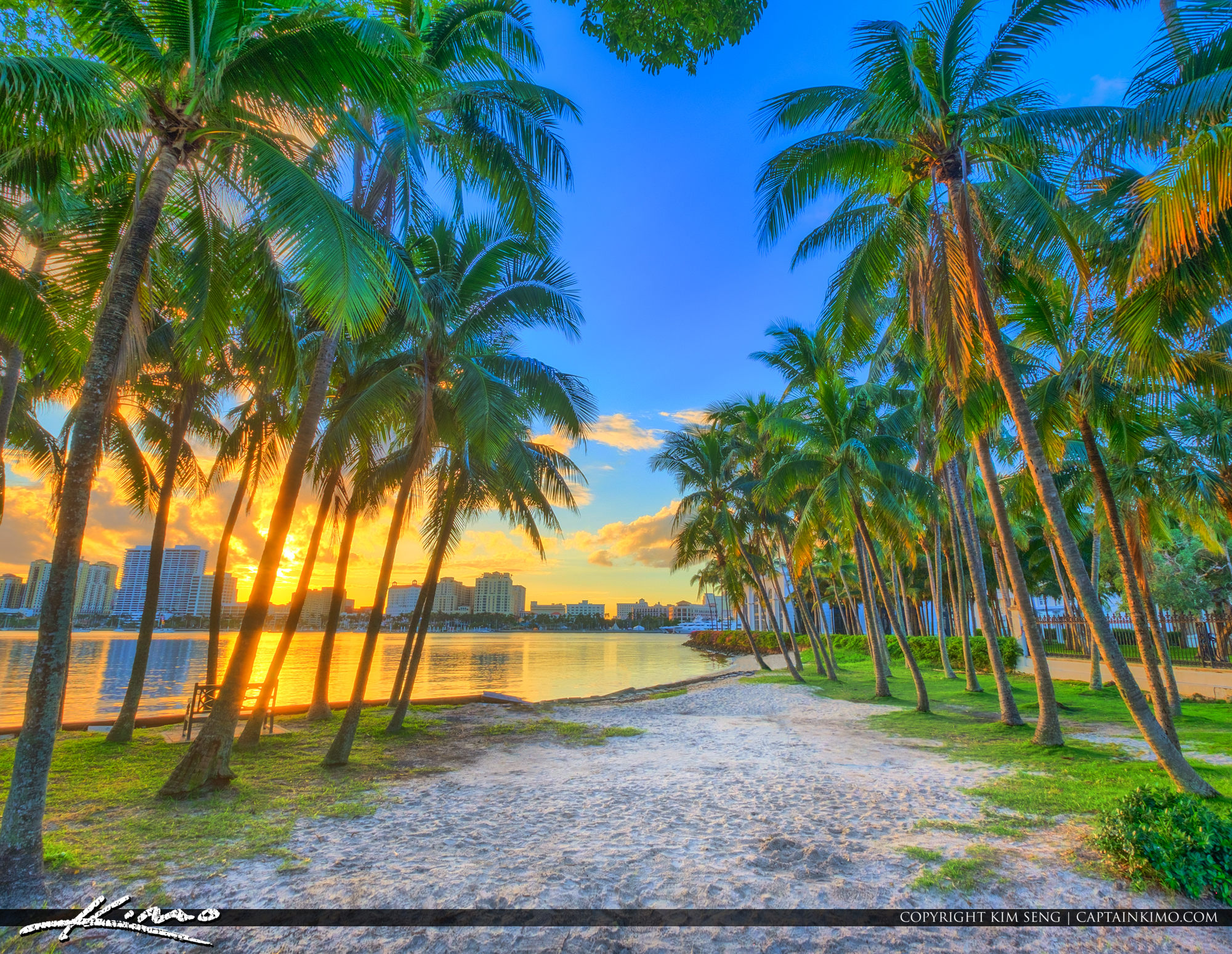 Palm Beach Island Coconut Trees Sunset Waterway Square