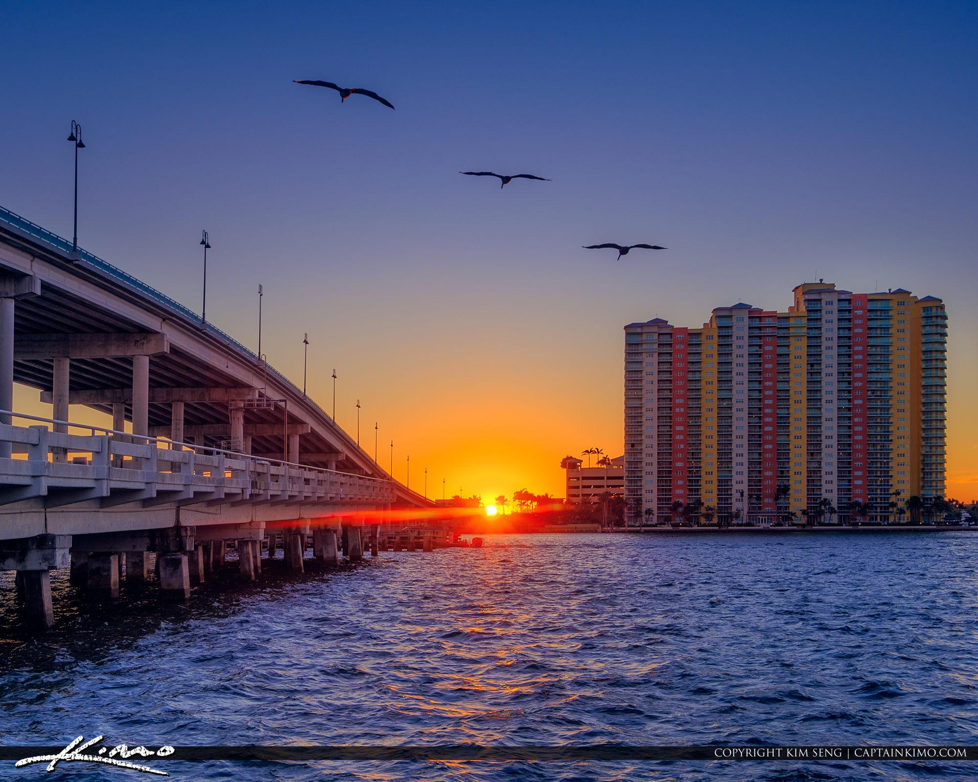 Phil Foster Park Singer Island Sunset Pelicans