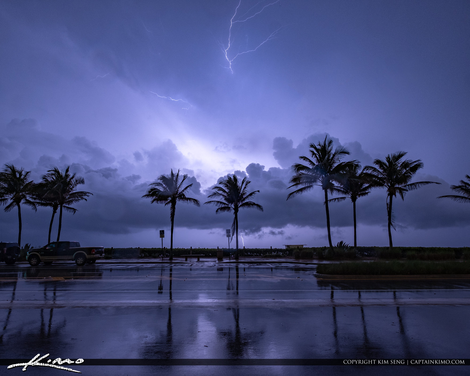 Juno Beach Park Coconut Trees with Lightning Storm