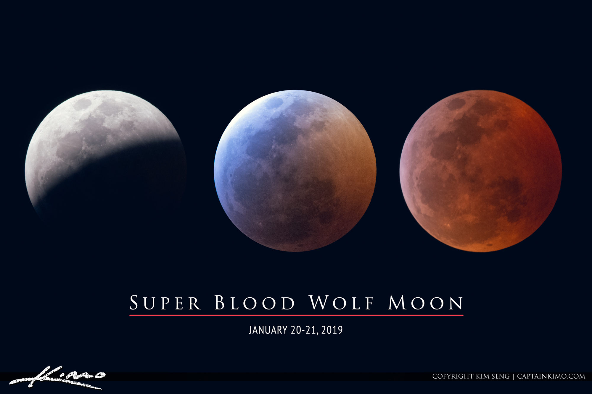 wolf blood moon january 2019 florida -#main