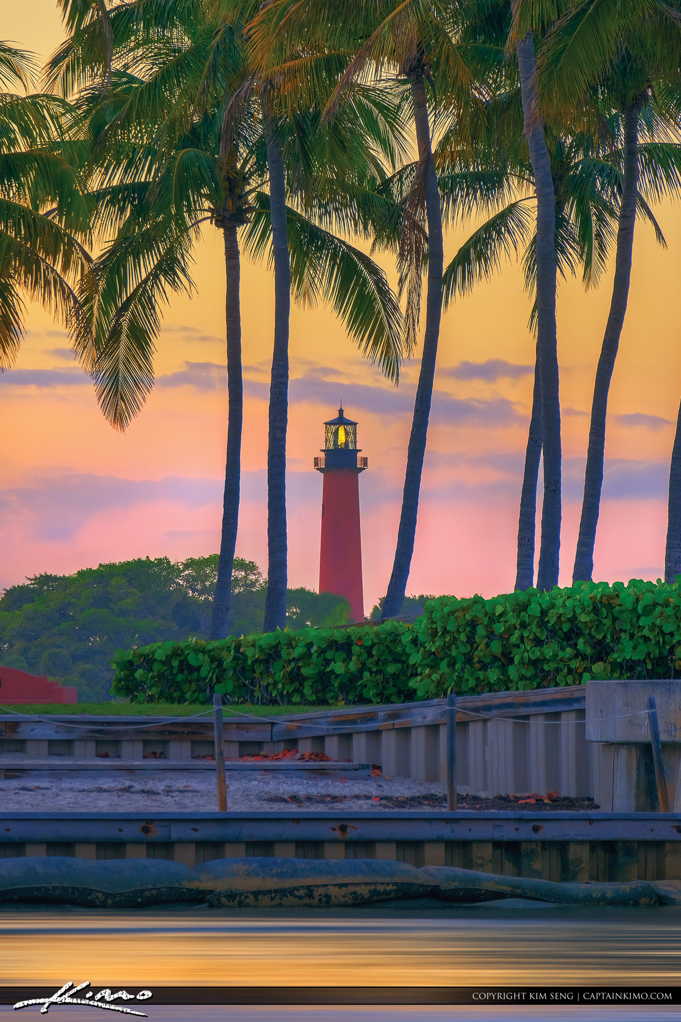 Coconut Tree Jupiter Lighthouse Warm Light